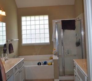 Dani L Bathroom Before - 2